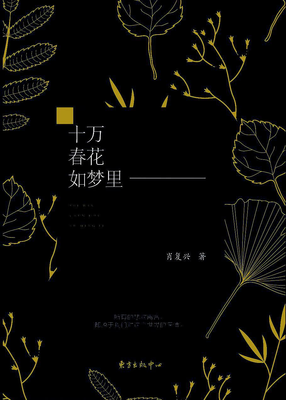 质朴的文字涌动炽烈的情感 ——读《十万春花如梦里》