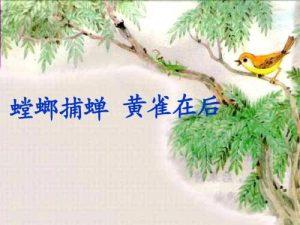 春夏秋,黄雀没有冬读《黄雀记》